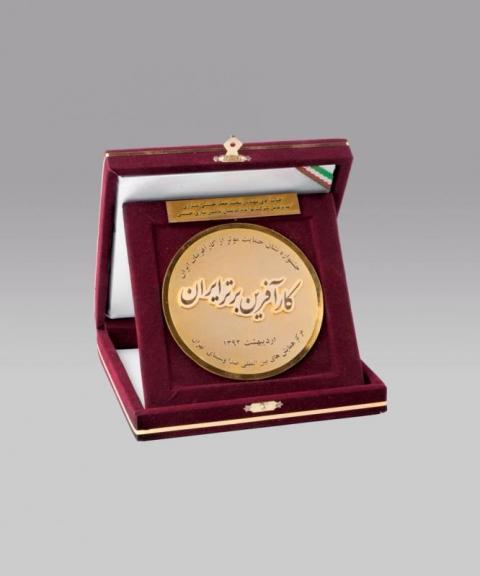 نشان کارآفرين برتر ايران در سال 2013